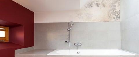 Schimmel in de badkamer: oorzaken, gevolgen en oplossingen