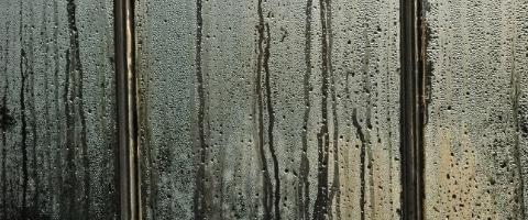 goede-luchtvochtigheidsgraad in huis
